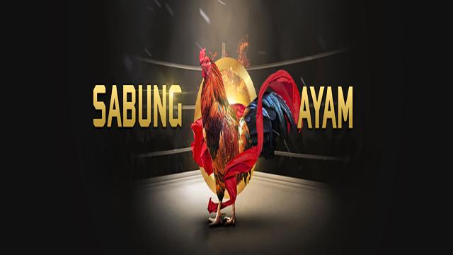 Situs Judi Ayam Online Terpercaya